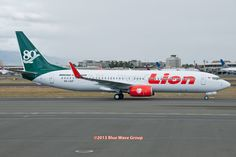 airlines special livery | HNL RareBirds: Lion's 80th 737NG