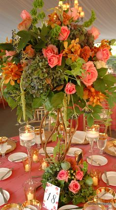 dark green hydrangea, coral roses, bells of Ireland, green hanging amaranthus, gold or orange mokara orchids, orange celosia, salal lemon leaf greenery, and ...?