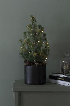 Planters, Christmas Tree, Holiday Decor, Home Decor, Christmas, Ideas, Teal Christmas Tree, Decoration Home, Room Decor