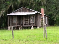 Old Florida Cracker House... do painting for DVS