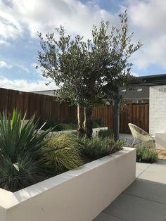 Back Gardens, Small Gardens, Outdoor Gardens, Outside Living, Outdoor Living, Landscape Design, Garden Design, Patio Makeover, Garden Styles