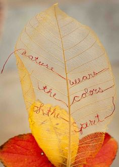 embroidery on a skeleton leaf by Ana Q.