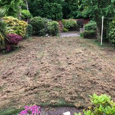 You wouldn't believe how much moss can come out of a lawn  Our team of expert maintenance operatives create specialist bespoke schedules for each of our clients to treat and care for their whole garden.  Get in touch with our team today to discuss our garden maintenance services  #garden #gardenmaintenance #maintenanceservice #gardener #lawntreatment #heretohelp #stayhome Garden Maintenance, Coming Out, Stepping Stones, Bespoke, Believe, Gardens, Touch, Canning