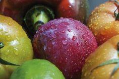 Cáncer de páncreas: el reto de la alimentación