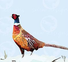 Pheasant in the snow snewdesigns