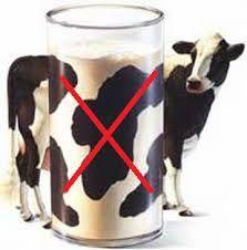 Resultado de imagen para leche dorada con cúrcuma