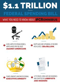 Infographic for Senator Rand Paul about the CRomnibus spending bill. Visit our website for more examples of Harris Media's work in web and graphic design for political campaigns: www.harrismediallc.com