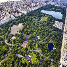 Central Park from above #NYC