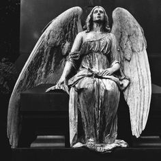 there are always angels beside me...