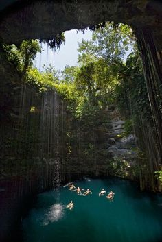 "Swimmers float in the saphirre waters of the Ik-Kil cenote, near the Maya site of Chichén Itzá in Mexico's Yucatán Peninsula. Cenote means ""natural well"" in Spanish. Sinkholes occurring at sea level will fill up as high as the water table, creating the famous clear blue pools, used by the Maya royalty for both relaxation and ritual sacrifices."