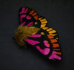 This moth is about 5 inches tall and 10 1/2 inches wide. The wings are made from fabric which is hand painted and embroidered with layer of thread