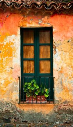 All Things Beautiful Old Windows, Arched Windows, Windows And Doors, Through The Window, Old Doors, Window Boxes, Door Knockers, Gates, Doorway