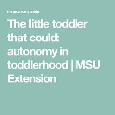 The little toddler that could: autonomy in toddlerhood |     MSU Extension