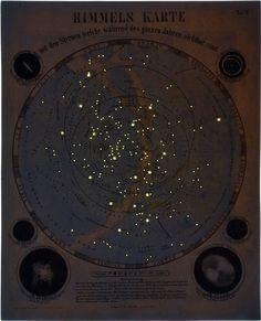 14 Best Kunstkammer Images Constellations Star Constellations