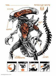 Cuppa-T geek streetwear brand NZ: Xenomorph Alien T-shirt release. Alien Vs Predator, Predator Costume, Predator Alien, Predator Cosplay, Aliens Movie, Aliens And Ufos, Science Fiction, Xenomorph, Giger Art