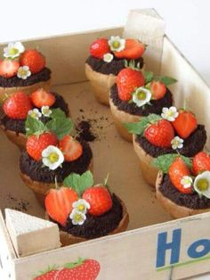 "Search Results for ""Strawberry and dark chocolate "" – Ice-cream in the rain Mini Cakes, Cupcake Cakes, Cake Fondant, Flower Pot Cake, Flower Pots, Chocolate Flowers, Chocolate Ice Cream, Cake Cookies, Cake Decorating"