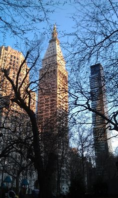 View from Madison Square Park