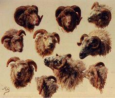 Studies of Rams by Rosa Bonheur