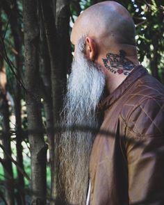 Shaved Head With Beard, Beard Head, Bald With Beard, Full Beard, Bald Men, Shaved Heads, Bad Beards, Grey Beards, Long Beards