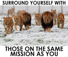 Photo: We become like the people we hang around the most. Surround yourself with those on the same mission as you. #PositivePeerPressure