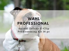 The review features the Wahl Professional Animal Deluxe U-Clip Pet Grooming Kit 16pc and you'll get to discover if you really need this product for your pets