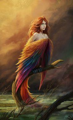 Slavic mystical creature. Bird of Paradise, a harbinger of misfortune.