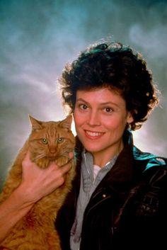 """[El romance de Sigourney Weaver con los gatos] - [La afinidad de Siggy comenzó con Jones el Gato en el set de su película """"Alien"""", en 1979.]"""