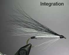 Reference: Forgotten Flies by Schmookler & Sils Bass Fishing Tips, Fishing Reels, Fishing Boats, Fishing Tricks, Fishing Lures, Fish Bites, Fly Casting, Saltwater Flies, Salmon Flies