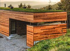 soffitto verde vegetale - Cerca con Google