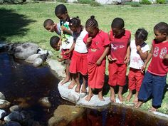 Teaching South African children about their environment in Harold Porter Gardens...
