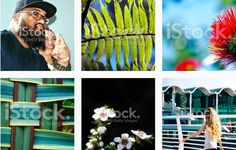 "LazingBee Photos NZ on Twitter: ""#NewZealand-based Stock Photographer @iStock specialising in #Kiwiana & The Essence of #Aotearoa  "" Kiwiana, New Zealand, Twitter, Photos, Photography, Google, Pictures, Photograph, Fotografie"