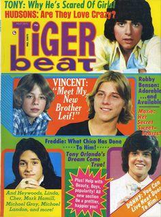 Tiger Beat, July 1975 - Tony DeFranco, Leif Garrett, Vincent Van Patten, Donny Osmond, and some guy I don't recognize