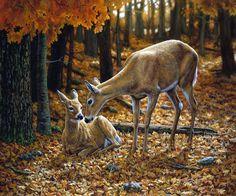 Разнообразный животный мир. Художница Crista Forest.. Обсуждение на LiveInternet - Российский Сервис Онлайн-Дневников