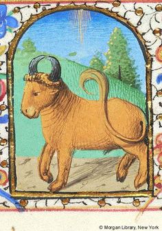 Book of Hours, MS I fol. - Zodiac Sign: Taurus -- Bull in landscape. Margins decorated with border of floreate ornament. Taurus Art, Taurus Bull, Zodiac Signs Taurus, Illuminated Letters, Illuminated Manuscript, Medieval Paintings, G 1, Book Of Hours, Prayer Book