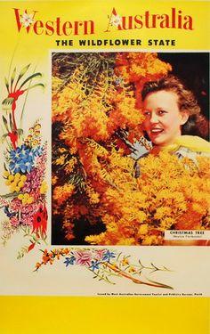 Western Australia, The Wildflower State Posters Australia, Australian Vintage, Paper Design, Travel Posters, Vintage Posters, Wild Flowers, Christmas Tree, Movie Posters, Advertising