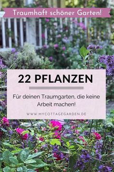 22 plants that enchant every garden! - 22 favorite plants that do no work, feel good everywhere and enchant every garden. Hydroponic Gardening, Container Gardening, Gardening Tips, Bonsai Garden, Garden Plants, Easy Care Plants, Easy Garden, Garden Bed, Back Gardens