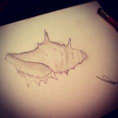 Shell Artist : Annabelle Petit  Instagram : annaberu11