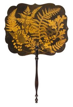 Fernware fan  Peter D. A. Boyd's Ferns and Pteridomania in Victorian Scotland