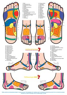 Zones Reflexology
