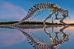 Full Scale T-Rex Sculpture in Paris