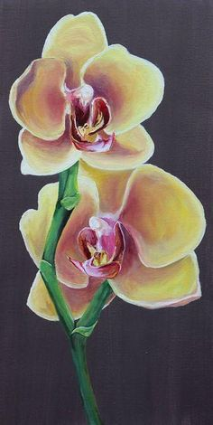 Yellow Orchid Oil Painting  Custom Art By Alexis