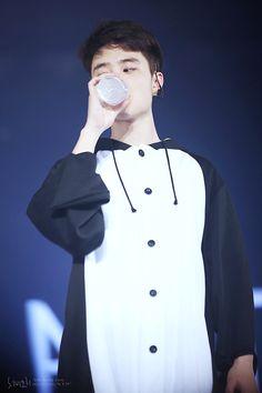 Kyungsoo de pinguim é minha morte