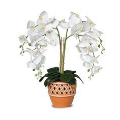 Arranjo Orquideas Brancas Real Toque 60x30 cm