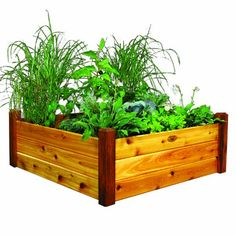 Raised Garden Beds are ideal for small plots of vegetables and/or flowers.  With these beds you eliminate tilling soil amending and minimize weeding.  They are quick and easy to assemble plant and m...