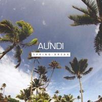 AUNDI Spring Break Mix by AUNDI on SoundCloud