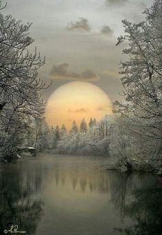 Ideas winter landscape photos earth for 2019 Beautiful Moon, Beautiful World, Beautiful Images, Beautiful Winter Pictures, All Nature, Amazing Nature, Foto Picture, Winter Scenery, Snow Scenes