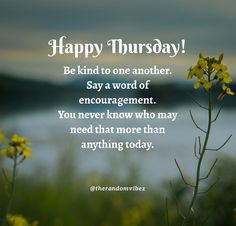 Happy Thursday! Be kind to one another. Say a word of encouragement. You never know who may need that more than anything today. #Thursdaymorningwishes #Thursdaypositivequotes #Happythursdayquotes #Thursdayquotesforwork #Goodmorningthursday #Morningthursdayquotes #Morningwishesquotes #Goodmorningwish #Beautifulmorningwishes #Thursdayquotes #Thursdaymorningquotes #Thursdaysayings #Goodmorningquotes #Goodmorningsayings #Positiveenergy #Inspirationalmorningquotes #Inspirationalquotes #Dailyquotes Thursday Morning Quotes, Happy Thursday Quotes, Morning Wishes Quotes, Morning Blessings, Good Morning Wishes, Good Morning Images, Good Morning Quotes, Work Quotes, Daily Quotes