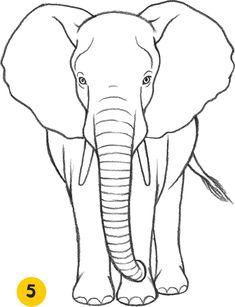 Elephant - learn to draw animals elephant sketch, draw an elephant, simple elephant drawing Image Elephant, Elephant Outline, Elephant Art, African Elephant, Draw An Elephant, Images Of Elephant, Elephant Doodle, Zentangle Elephant, Elephant Template