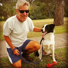 PADDY........REST TIME! THE BEST DOG EVER! dogsbigdayout.com.au