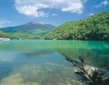 Tyourou Lake. Looking for more information aboout Miyagi? Go Visit Miyagi Prefecture Tourism Federation.   http://www.miyagi-kankou.or.jp/